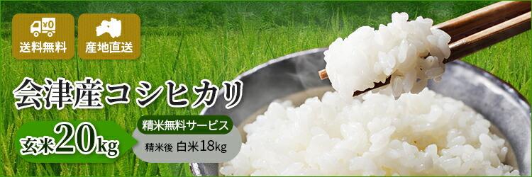 福島県会津産100% 令和2年産 新米コシヒカリ 玄米20kg