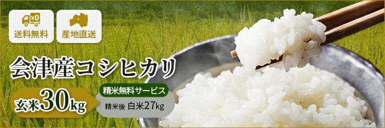 福島県会津産100% 令和2年産 新米コシヒカリ 玄米30kg