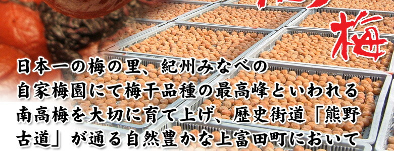 日本一の梅産地紀州みなべ町の自家梅園にて最高峰の南高梅を育てています。