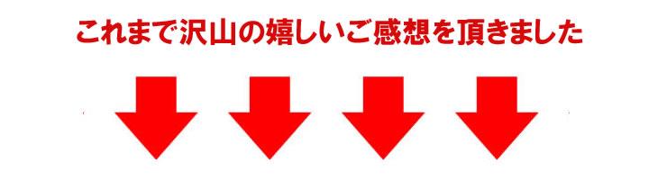 down01.jpg