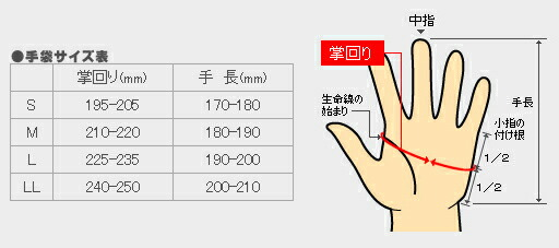 トンボレックス サイズ表