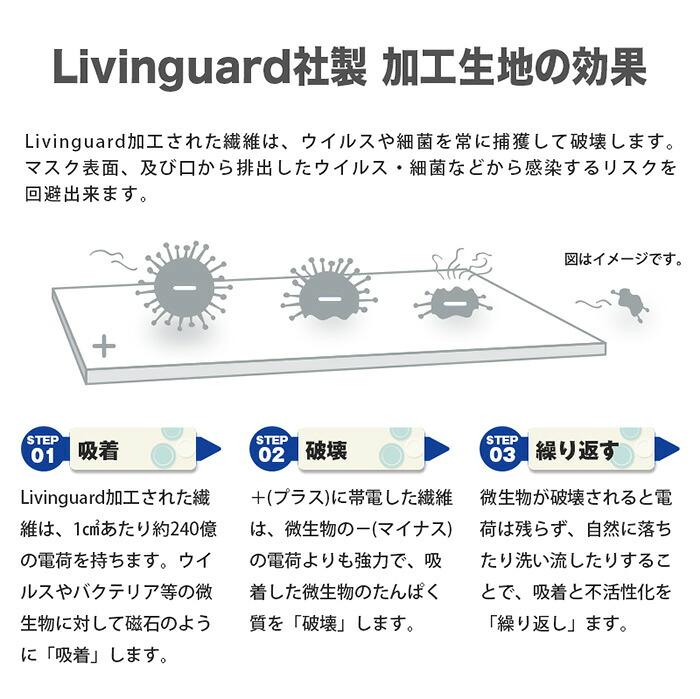 Livingguard ウイルス 細菌 吸着 破壊