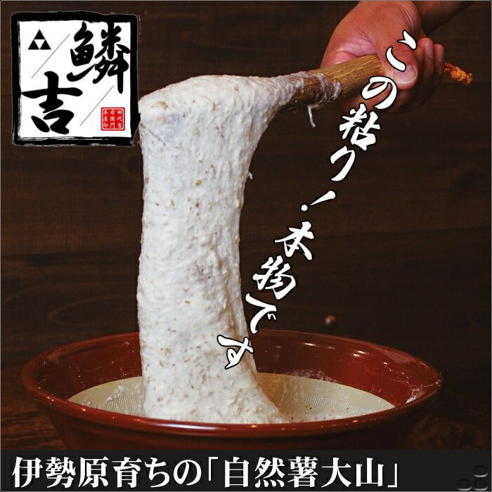 小田原かまぼこ鱗吉 自然薯揚げ