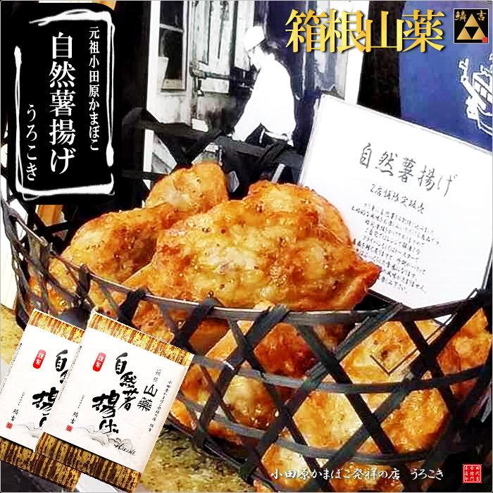 小田原 かまぼこ うろこき 自然薯揚げ