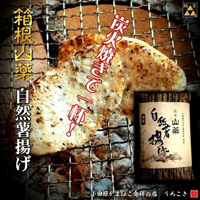 小田原 かまぼこ うろこき 自然薯揚げ2個セット