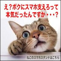 スマホスタンド/ねこ/ネコ