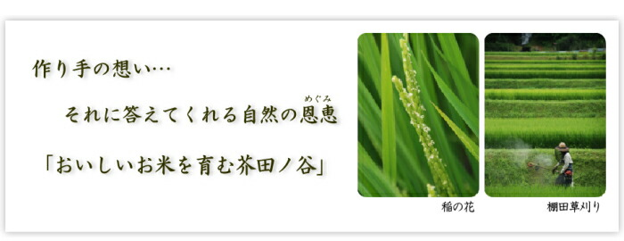 里山の米づくり