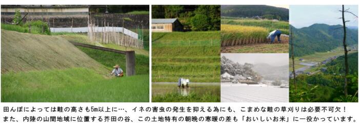 里山の米づくり お取り寄せ