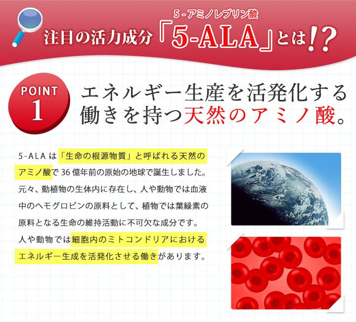 注目の活力成分「ALA」とは!? ポイント1 エネルギーの生産を活性化する働きを持つ天然のアミノ酸
