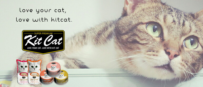 Kit Cat キットキャット