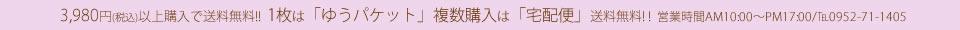 3,980円ご注文で【送料無料】