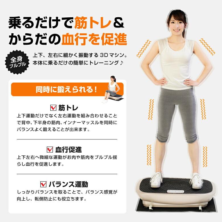 3D振動マシン バランスウェーブ/FAV3017_02