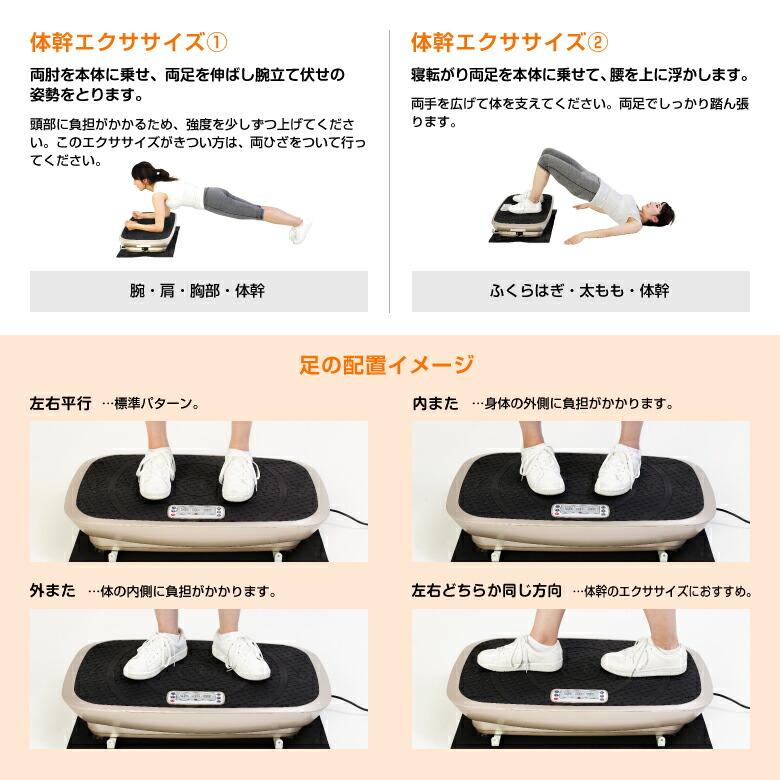 3D振動マシン バランスウェーブ/FAV3017_08
