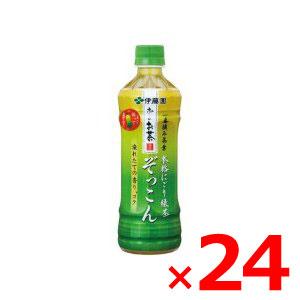 【納期約2週間】(001738)伊藤園 おーいお茶 ぞっこん 500ml ×24本セット