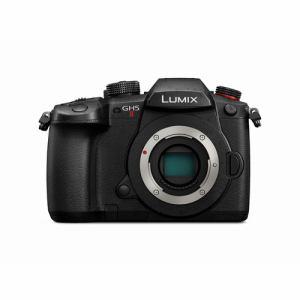 ◎【納期約2週間】Panasonic パナソニック DC-GH5M2 デジタル一眼カメラ DCGH5M2