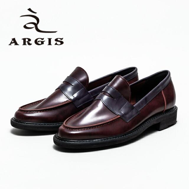 ARGIS 11101