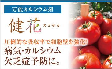 ー万能カルシウム剤ー 健花(スコヤカ)