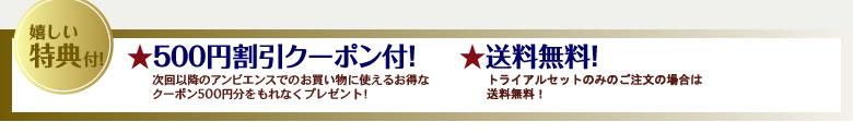 ★500円割引クーポン付!★送料無料!
