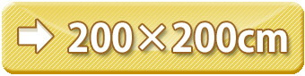 ラグサイズ:200×200cm