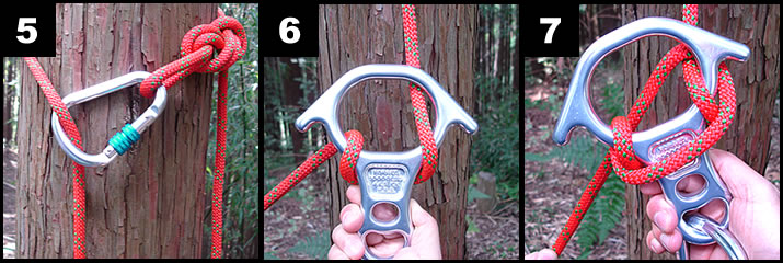 木にロープを巻きつけ、1のようにカラビナを通します。