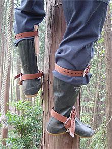 昔の木製電柱に登る時に使われた道具ですが、林業界でも広く使われてきた道具です