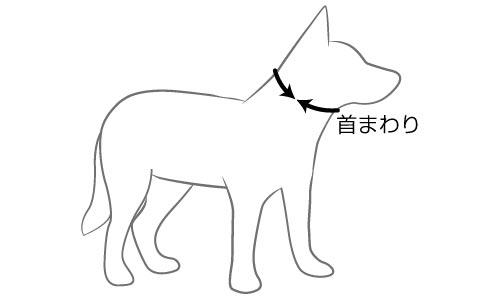 オーストラリア EZYDOG社 犬用(ドッグ) 首輪 「ダブルロックカラー XLサイズ」
