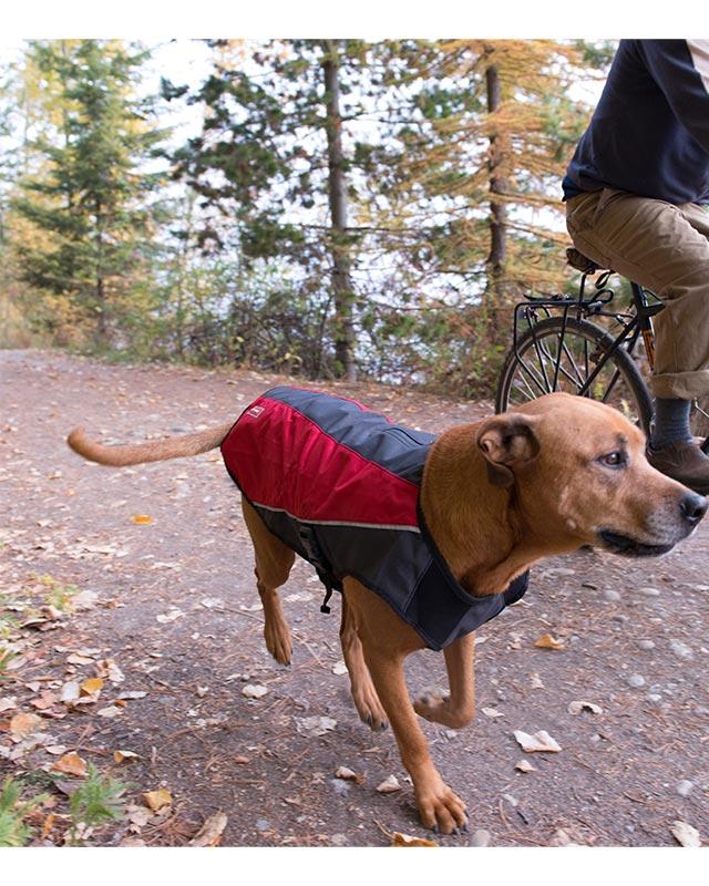 オーストラリア EZYDOG社 犬用(ドッグ) ジャケット 「エレメントジャケット Mサイズ」