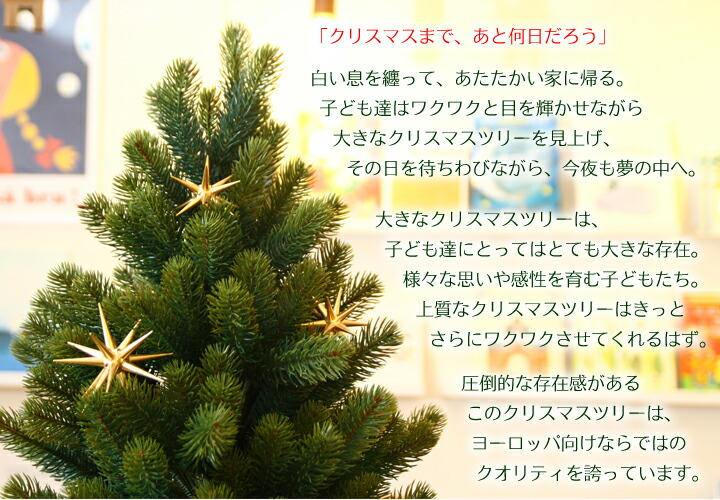 plastiflor_top.jpg