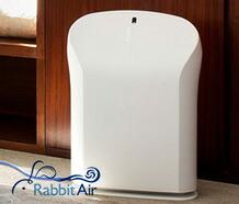 Rabbit Air 空気清浄機 BioGS 2.0