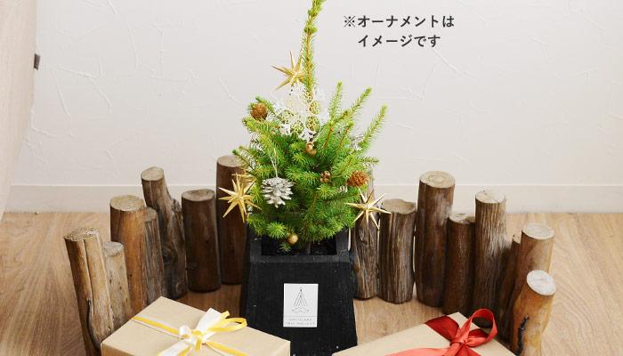 サンタランドツリープロジェクト クリスマスツリー Sサイズ/SANTALAND TREE PROJECT