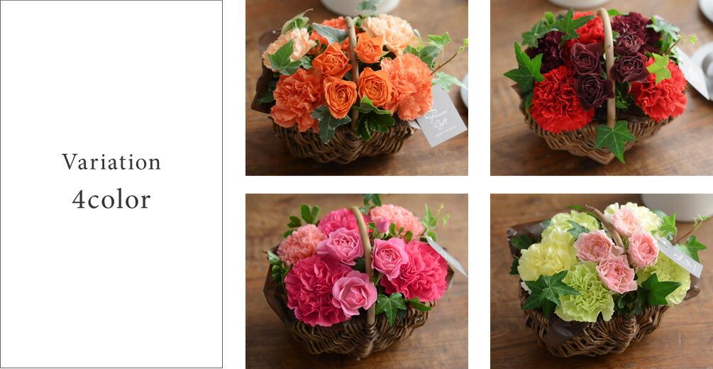 選べる4色(オレンジ、レッド、ピンク、グリーン)