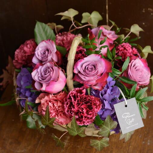 彩り溢れるバラの競演 濃ピンク