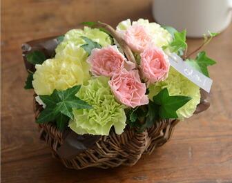 溢れるマルシェ花グリーン