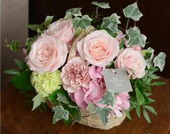 彩り溢れるバラの競演 淡ピンク