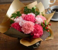 魔法のお花ピンク