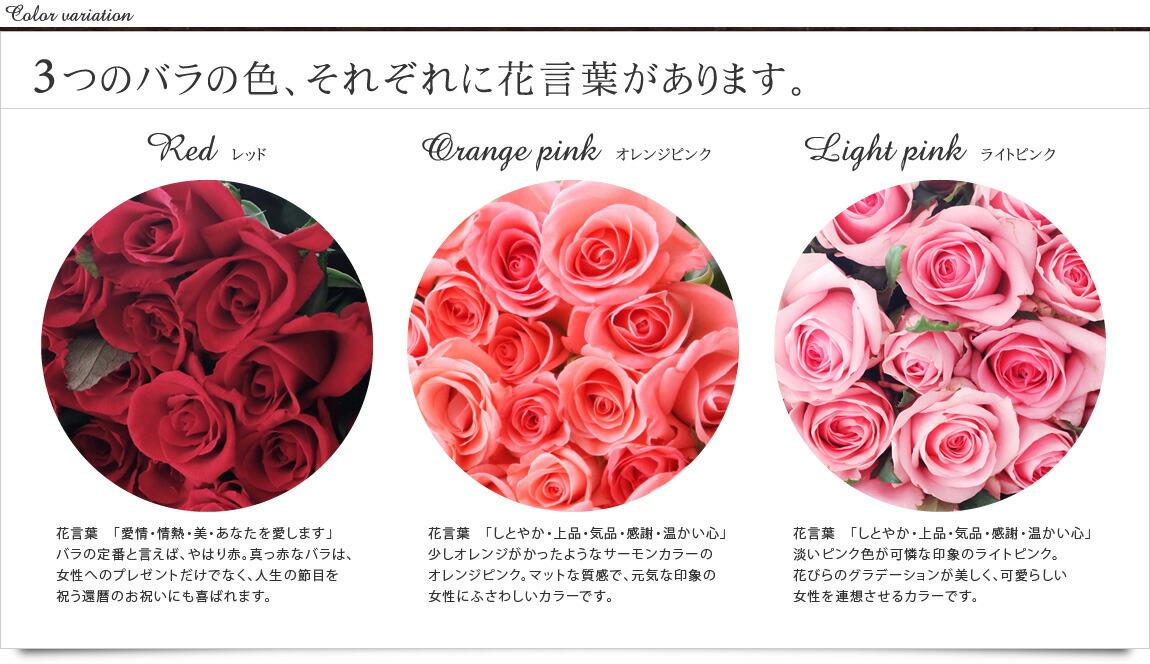 3つのバラの色、それぞれに花言葉があります。