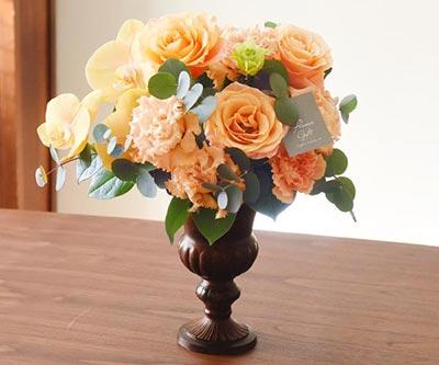 まばゆい胡蝶蘭の花器アレン