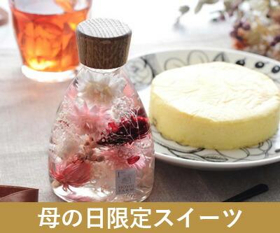 ハーバリウム&大人のチーズケーキ