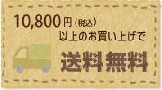 10,800円(税込)以上のお買い上げで送料無料