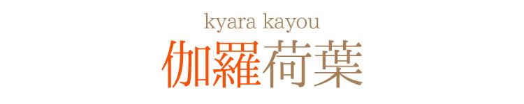 香木 伽羅 伽楠香 奇南香 日本香堂 お香 長寸 最高級品