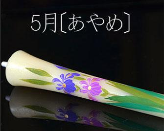 手描き絵蝋燭 5月の花 あやめ