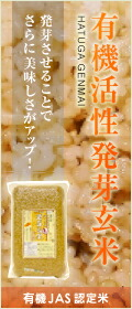 活性発芽玄米