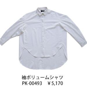 pk-00493