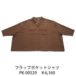 pk-00529