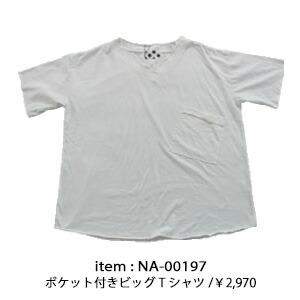 na-00197