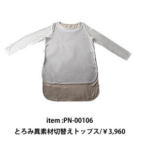 pn-00106
