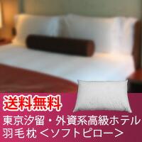東京汐留・外資系高級ホテル(50×75)ソフトピロー