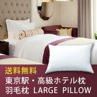 東京駅・高級ホテルの羽毛枕【LAEGEPILLOW】