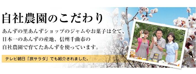 ジャムやお菓子は全て日本一のあんずの産地、信州千曲市の横島農園で育てたあんずを使っています