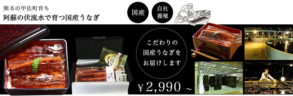 国産うなぎの蒲焼き、熊本